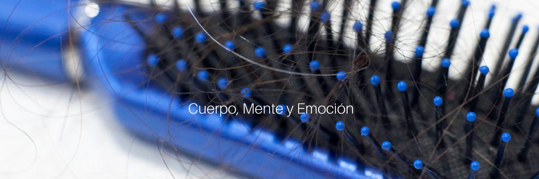 """<a href=""""http://cuerpomenteyemocion.net/cuando-se-te-cae-pelo/"""">Cuando se te cae el pelo…</a><br/><p>"""